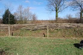 Blackdown Hills Hedge Association