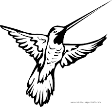 Small Picture Emejing Printable Coloring Pages Birds Pictures Printable