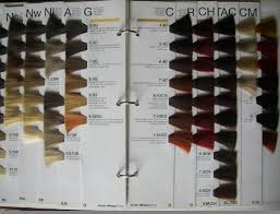 European Color Chart Hair Colour Chart Buy From Guangzhou Haohui Hair Color