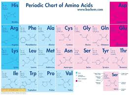 Amino Acid Characteristics Chart Periodic Table Of Amino Acids Biochemistry Notes