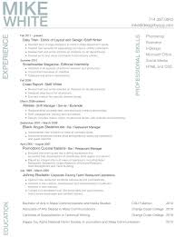 Ideas Of Resume Examples For Professionals Cute Amazing Resumes