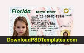 New Updated Driver fl Template Psd License Florida
