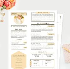 Resume And Cover Letter Template Impressive Pretty Sunrise Resume Cover Letter References Template Package