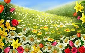 field full of flowers. Beautiful Nature ...