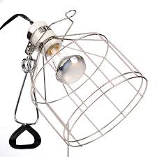 exo terra porcelain wire clamp lamp 175