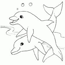 Kids N Fun 57 Kleurplaten Van Mandala Dieren Kleurplaten Dolfijnen