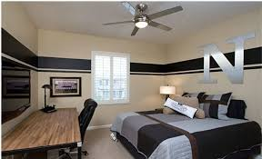 Painted Bedroom Cool Male Painted Bedroom Decorating Boys Room Ideas And Bedroom