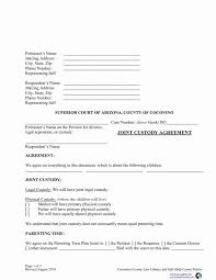 Custody Agreement Template Voluntary Child Custody Agreement Form Template California