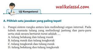 Tolong jawab bahasa indonesia kelas 7 edisi revisi 2016 halaman. Kunci Jawaban Ipa Kelas 8 Uji Kompetensi Bab 1 Halaman 66 67 68 69 70 Wali Kelas Sd