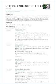 Sample Of Social Worker Resume Fascinating Resume Samples For Social Work Internship Also Sample Social Work