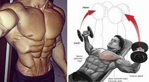 5 suts to build a bigger chest