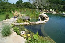 10 Reasons to Consider Natural Swimming Pools INSTALL IT DIRECT