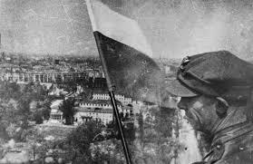 Znalezione obrazy dla zapytania polish flag black and white