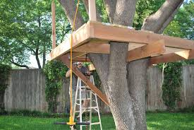 coolest treehouse ever  Fairly simple plan  Lower platform      coolest treehouse ever  Fairly simple plan  Lower platform   slide and rockwall  Top platform    quot house quot  and zipline  No support needed from t