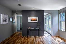 dark walls in the interior pros and