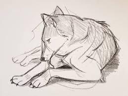 Sketches Animal Animal Drawing Tumblr
