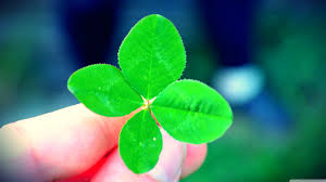 four leaf clover desktop wallpaper. Simple Four UHD  And Four Leaf Clover Desktop Wallpaper O