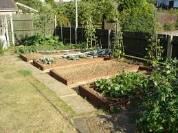 Small Picture Designing a kitchen garden
