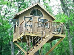 tree house cats outdoor house for cats free outside cat house plans unique cat tree house tree house cats tree house cat