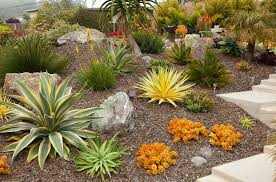 Small Picture 26 Best Succulent Garden Ideas Around The World San luis obispo