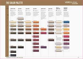 Lifting Conversion Chart Rusk Hair Dye 18 Factual Rusk Hair Color Conversion Chart