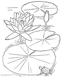 free printable flower coloring book page