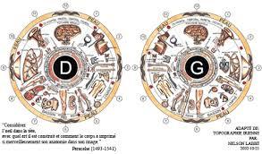 Iridology Chart Pdf Iridology Pdf Buscar Con Google Health Iris
