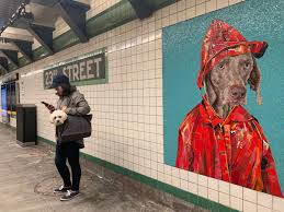 Image result for where are Wegman mosaics in nyc subway