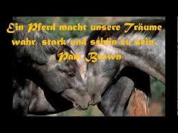 Die Schönsten Sprüche Zitate Und Weisheiten über Pferde Youtube