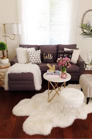 White Sofa Living Room Decorating Living Room Fabulous Decor Idea For Living Room With Display