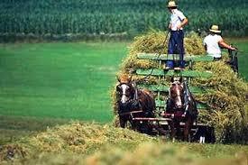 the pennsylvania center for the book amish values amish farm cart