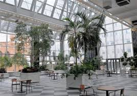 the interior of the ppg wintergarden downtown