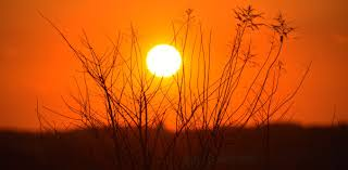 תוצאת תמונה עבור sun