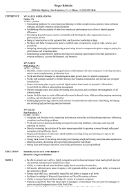 Vp Sales Resume Samples Velvet Jobs