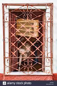 Fenster öffnen Mit Vogelkäfig Und Ventilator Hinter Orange