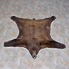 coyote taxidermy rug for 12328 for the taxidermy