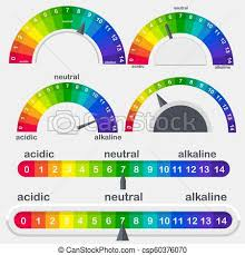 Ph Chart Alkaline Ph Value Scale Meter For Acid And Alkaline Solutions Vector Set