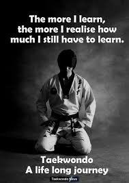 Martial Arts Quotes Magnificent 48 Inspirational Martial Art Quotes You Must Read Right Now Mma