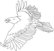 Bald Eagle Coloring Pages For Kids Printable Uniquecoloringpages