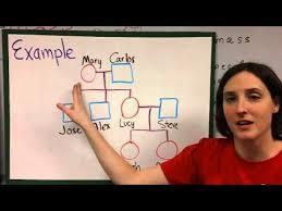 Biology Pedigree Chart Maker Pedigree Charts Youtube