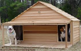large duplex dog house   gif    Doghouse For Two Large Dogs Re Re De