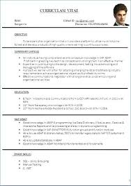 Effective Resume Format Fascinating Resume Format Word File Fresh S Resume Format Word File Download