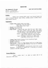 How To Write A ResumeNet Adorable Net Developer Resume Sample Cpbz Dot Net Developer Resume Resume