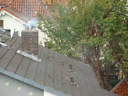Nachbars Kamin Qualmt Und Stinkt Ständig Geruchsbelästigung