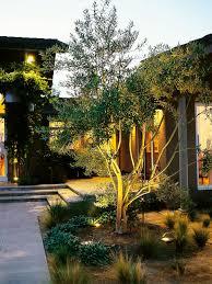 landscape lighting design ideas 1000 images. Backlighting1 Lit Tree2 Landscape Lighting Design Ideas 1000 Images D