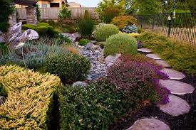 Small Picture Dry Stream Bed Drought Tolerant Landscape Garden Design Simple