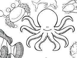 Free Coloring Pages Of Ocean Waves For Adults Animal Page Habitat