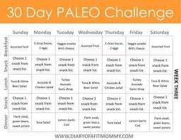 30 Day Healthy Eating Plan Pdf Paleo Diet Plan Paleo Foods For Busy People The 30