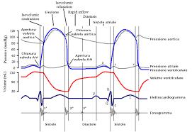 x13 ecm motor wiring diagram on x13 images free download wiring Genteq Motor Wiring Diagram x13 ecm motor wiring diagram 6 x 13 motor wiring diagram replacement ecm motor x13 genteq ecm motor wiring diagram