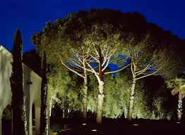 garden lighting design. garden lighting design n